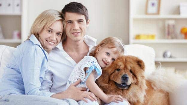 Wills & Trusts dog-young-family Direct Wills Seething Wells